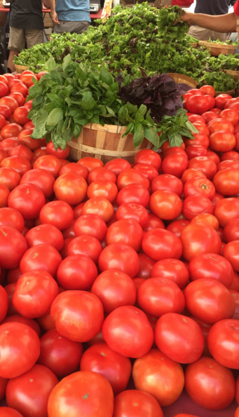 Basil Tomatoes